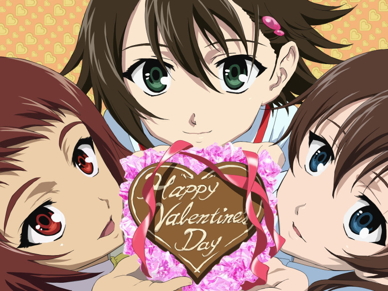 Anime-Happy-Valentines-Day-2012-800x600-wide-wallpapers.net