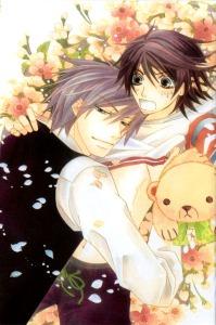Junjou-romantica-manga-v12-junjou-romantica-30893467-780-1178